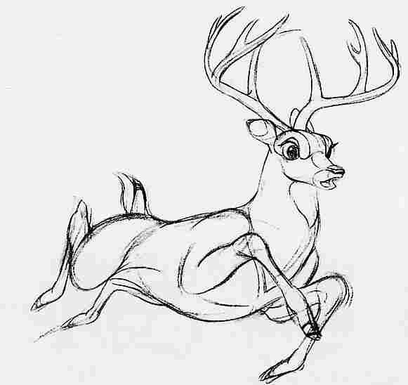 Bambi - Dessiner un cerf ...